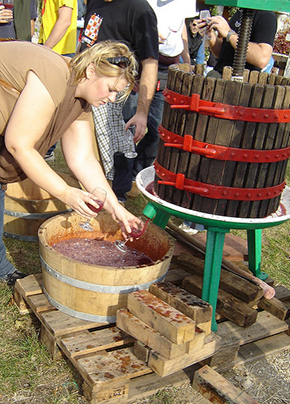 © Elin B – Having some home foot stamped grape juice, Eger Vineyard, Hungary – Flickr, creative commons